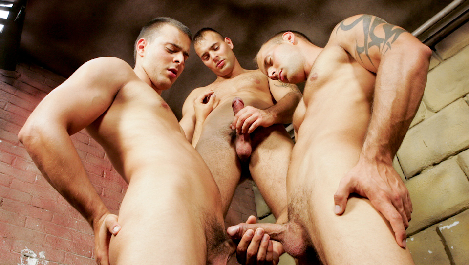 Watch Brotherly Love (Visconti Triplets) Gay Porn Tube Videos Gifs And Free XXX HD Sex Movies Photos Online