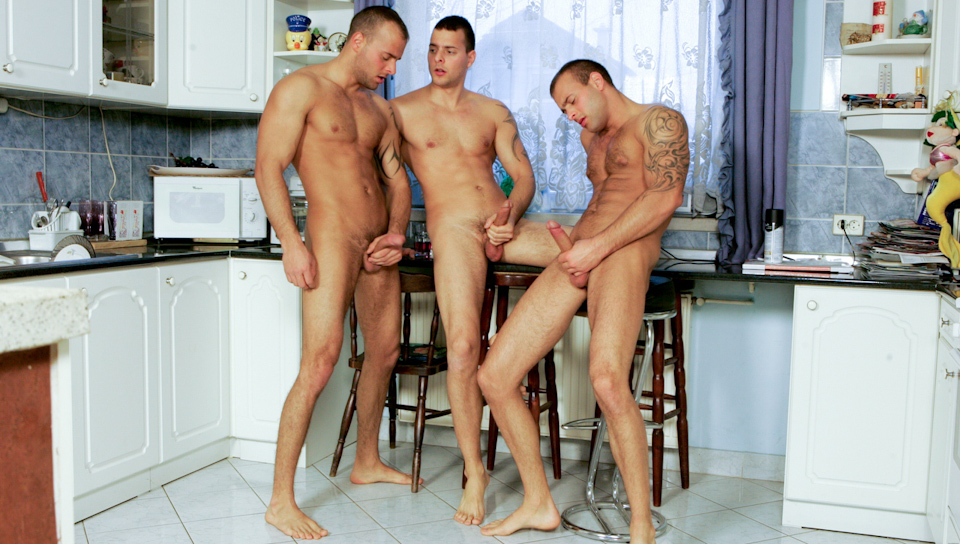 Watch Kitchen Party (Visconti Triplets) Gay Porn Tube Videos Gifs And Free XXX HD Sex Movies Photos Online