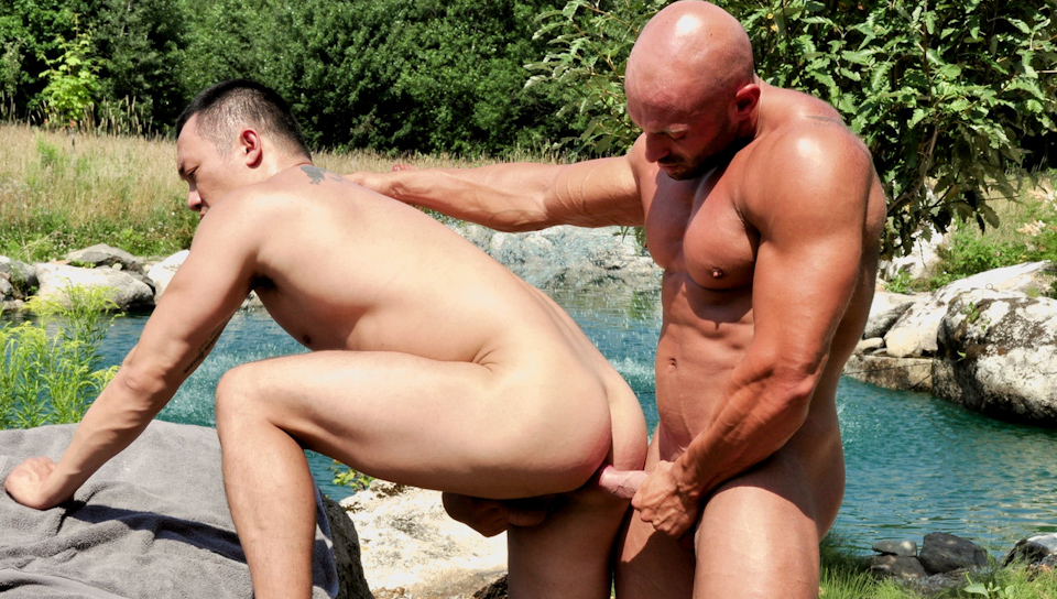 Watch Pummelling Archer's Ass (Men Of Montreal) Gay Porn Tube Videos Gifs And Free XXX HD Sex Movies Photos Online