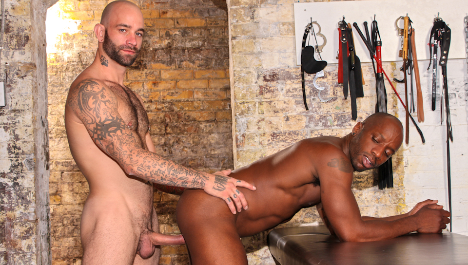Watch Bound, Whipped And Fucked (Next Door Ebony) Gay Porn Tube Videos Gifs And Free XXX HD Sex Movies Photos Online