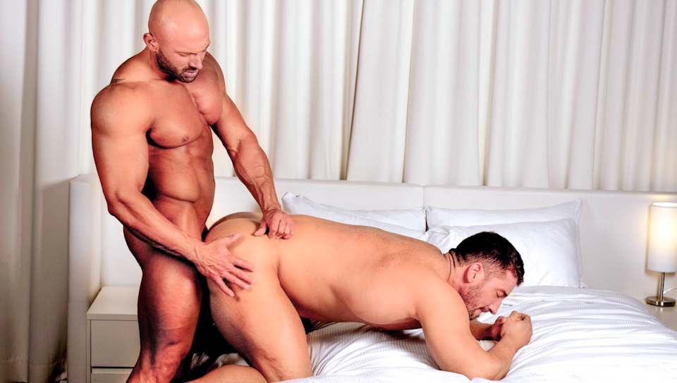 Watch Clash Of The Titans! (Men Of Montreal) Gay Porn Tube Videos Gifs And Free XXX HD Sex Movies Photos Online