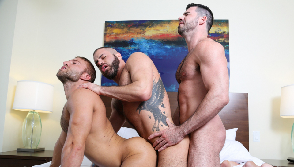 Watch A New Addition (Men Over 30) Gay Porn Tube Videos Gifs And Free XXX HD Sex Movies Photos Online