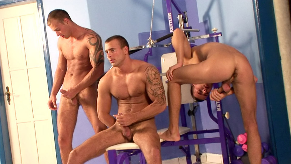 Watch Triplets Gym Threesome (Visconti Triplets) Gay Porn Tube Videos Gifs And Free XXX HD Sex Movies Photos Online