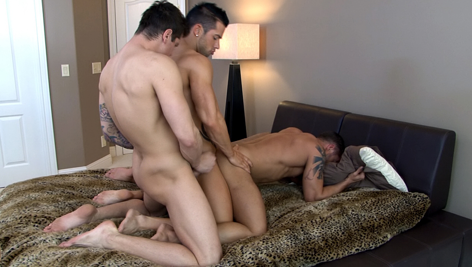Watch 3 Way Ass Play (Cody Cummings) Gay Porn Tube Videos Gifs And Free XXX HD Sex Movies Photos Online