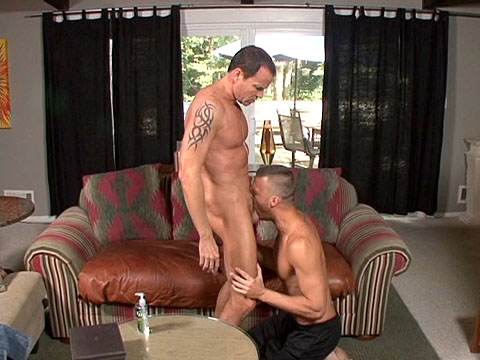 Watch Jason Sparks And Steven Daigle (Jason Sparks Live) Gay Porn Tube Videos Gifs And Free XXX HD Sex Movies Photos Online