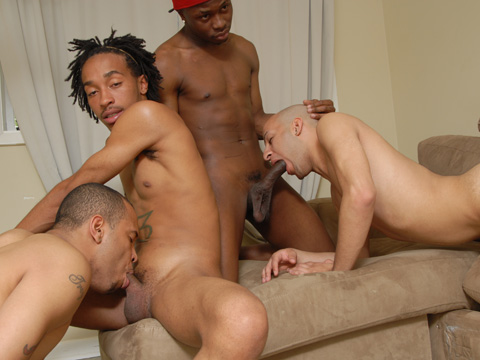 Watch Calito, Cocky Boi, Trap Boyy, Mr Pipem And Jeremy Rjojas (Thug Orgy) Gay Porn Tube Videos Gifs And Free XXX HD Sex Movies Photos Online