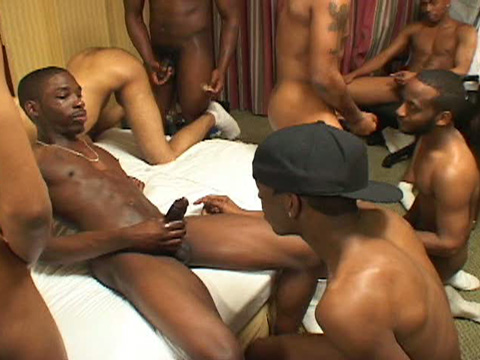 Watch Casino, Chaos, Dutch, Muzario, Peanut, Pinky, Polo, Spades, Thugz (Thug Orgy) Gay Porn Tube Videos Gifs And Free XXX HD Sex Movies Photos Online