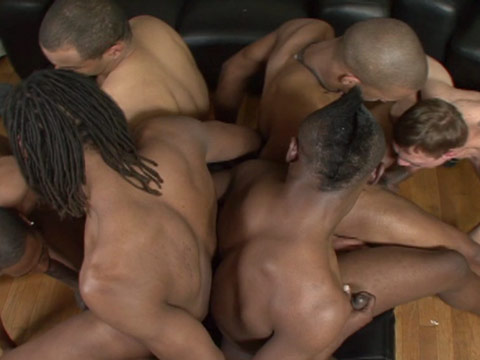 Watch Ass-Olute, Black Lion And Trapp Boy (Thug Orgy) Gay Porn Tube Videos Gifs And Free XXX HD Sex Movies Photos Online