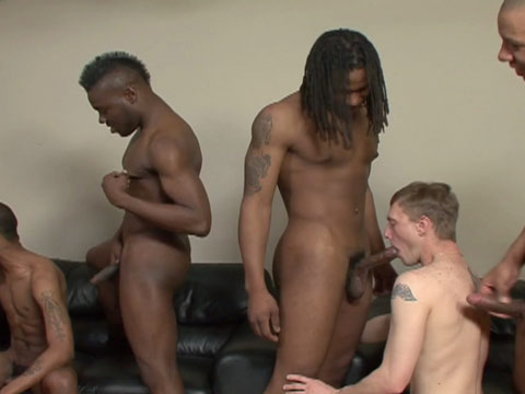 Watch Ass-Olute, Black Lion And Tapp Boy (Thug Orgy) Gay Porn Tube Videos Gifs And Free XXX HD Sex Movies Photos Online