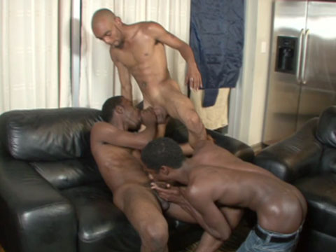 Watch Carlito, Chaz, Hershey, Killah And Magnum (Thug Orgy) Gay Porn Tube Videos Gifs And Free XXX HD Sex Movies Photos Online