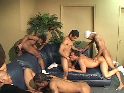 Watch Anaconda, Dj, Mickey, Sagittarius, Sexcyone, Sexy Redd, T'rodd And (Thug Orgy) Gay Porn Tube Videos Gifs And Free XXX HD Sex Movies Photos Online