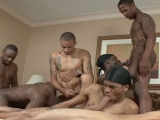 Angel Boi, Da Bod, Dynasty, King Dingo, Phat Daddy, Seduction, Th