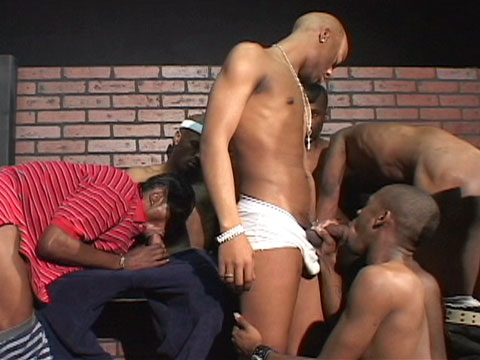 Watch Sexcyone, Anaconda, Mickey, Dekarlo, Dark Thunder And Taz (Thug Orgy) Gay Porn Tube Videos Gifs And Free XXX HD Sex Movies Photos Online