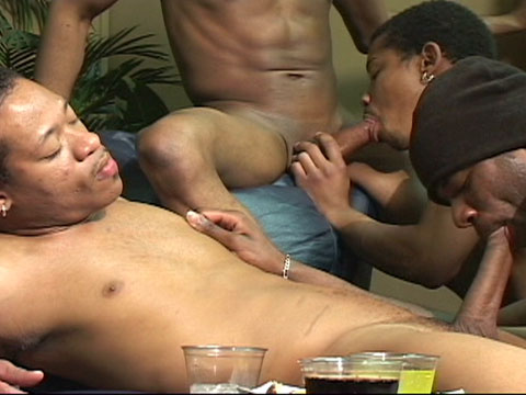 Watch Anaconda, Dj, Mickey, Sagittarius, Sexcyone, Sexy Redd, T'rodd, W (Thug Orgy) Gay Porn Tube Videos Gifs And Free XXX HD Sex Movies Photos Online