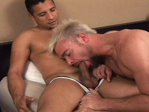 Watch Bruno Durango Bangs Nelson Troy (Bang Bang Boys) Gay Porn Tube Videos Gifs And Free XXX HD Sex Movies Photos Online