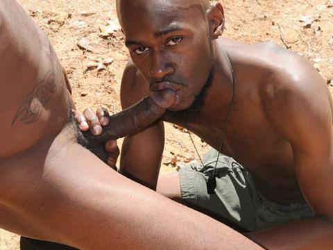 Watch Black Rod And Phenix (Dark Thunder) Gay Porn Tube Videos Gifs And Free XXX HD Sex Movies Photos Online