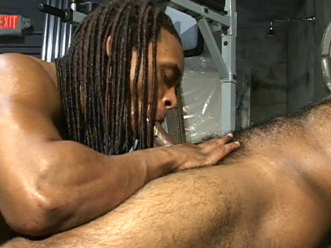 Watch Trigger And Rudy (Dark Thunder) Gay Porn Tube Videos Gifs And Free XXX HD Sex Movies Photos Online