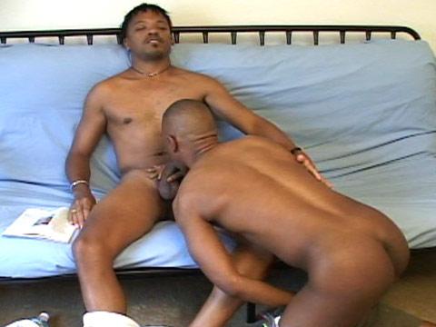 Watch Justyn, Chris Johnson, Kamrun, Lance, Kincaid, Miami, Hawke Shado (Dark Thunder) Gay Porn Tube Videos Gifs And Free XXX HD Sex Movies Photos Online
