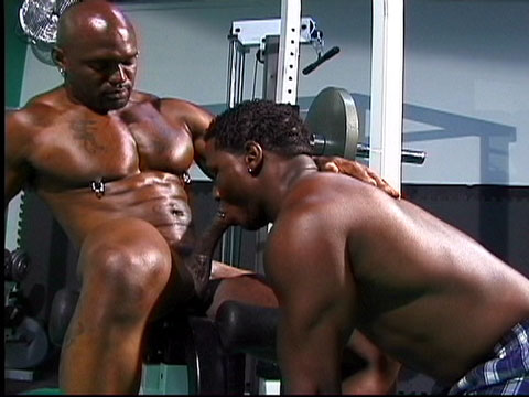 Watch Flex Deon And Soloman (Dark Thunder) Gay Porn Tube Videos Gifs And Free XXX HD Sex Movies Photos Online