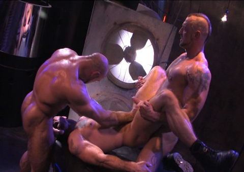 Watch Roid Rage (Raging Stallion) Gay Porn Tube Videos Gifs And Free XXX HD Sex Movies Photos Online