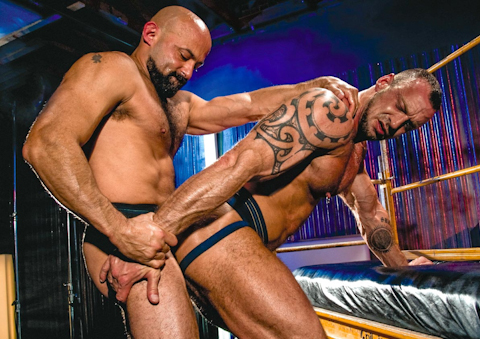 Watch Centurion Muscle 5 Maximus (Raging Stallion) Gay Porn Tube Videos Gifs And Free XXX HD Sex Movies Photos Online