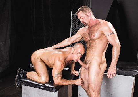 Watch Omega (Raging Stallion) Gay Porn Tube Videos Gifs And Free XXX HD Sex Movies Photos Online