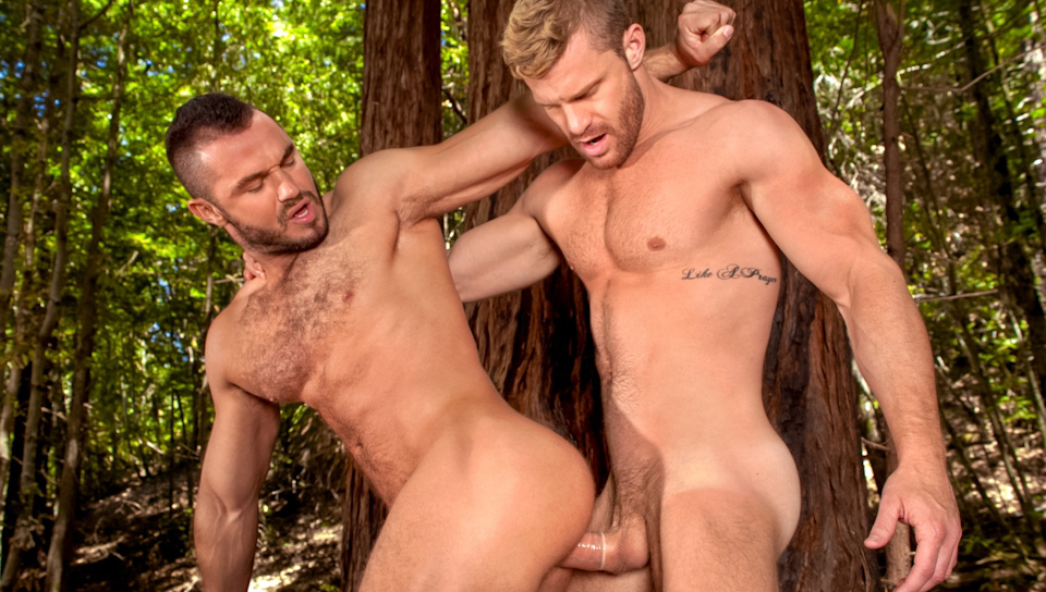 Watch The Woods: Part 2 (Raging Stallion) Gay Porn Tube Videos Gifs And Free XXX HD Sex Movies Photos Online