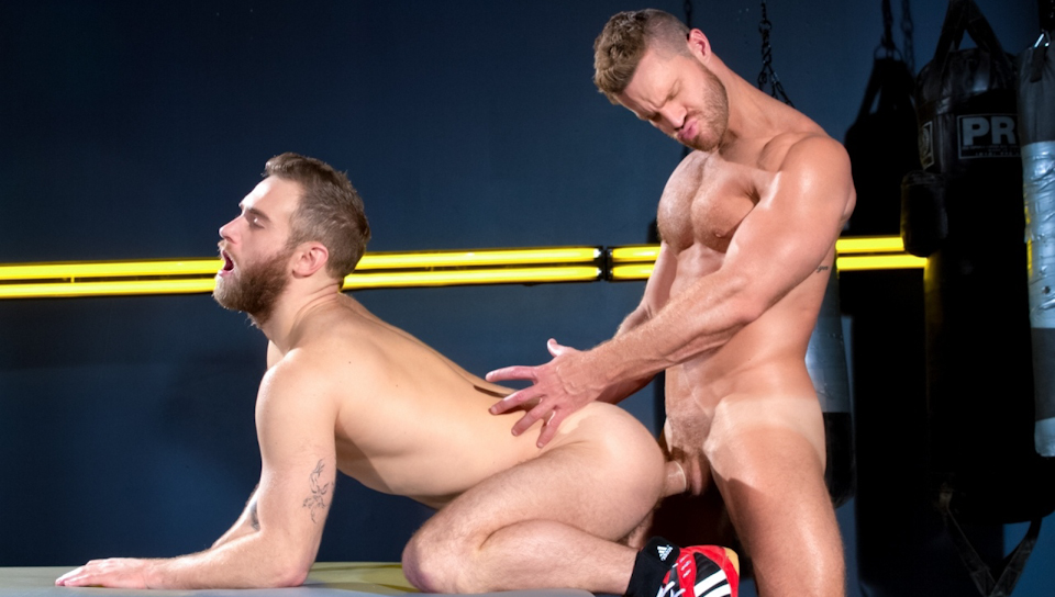 Watch Cock Fight! Match 1 (Raging Stallion) Gay Porn Tube Videos Gifs And Free XXX HD Sex Movies Photos Online