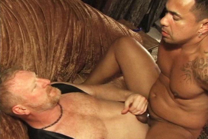 Watch Bears And Pigs (Male Digital) Gay Porn Tube Videos Gifs And Free XXX HD Sex Movies Photos Online