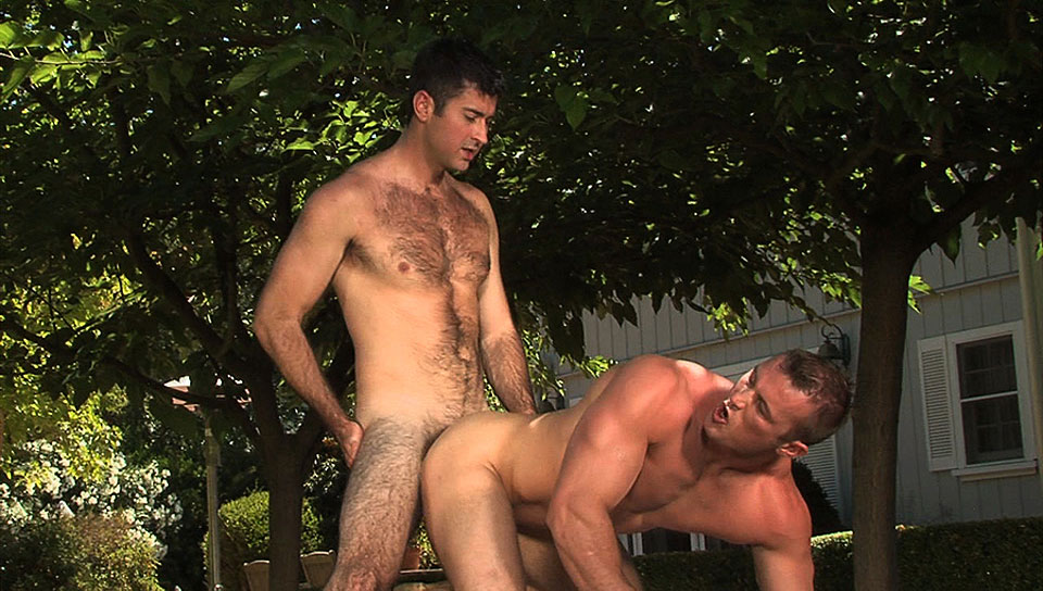 Watch Hot Bods (Colt Studio Group) Gay Porn Tube Videos Gifs And Free XXX HD Sex Movies Photos Online