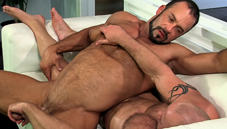 Watch Ripped: No Pain, All Gain (Colt Studio Group) Gay Porn Tube Videos Gifs And Free XXX HD Sex Movies Photos Online