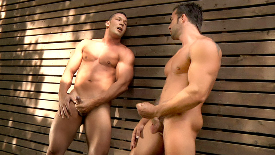 Watch Hard Wood (Colt Studio Group) Gay Porn Tube Videos Gifs And Free XXX HD Sex Movies Photos Online