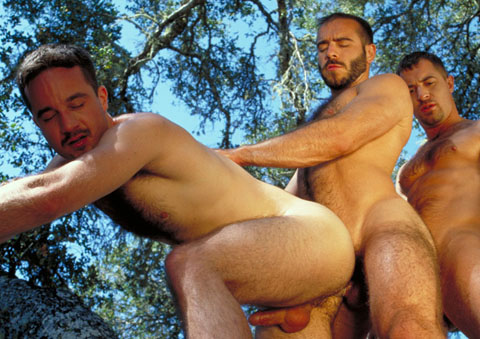 Watch Wild Oats (Hot House) Gay Porn Tube Videos Gifs And Free XXX HD Sex Movies Photos Online