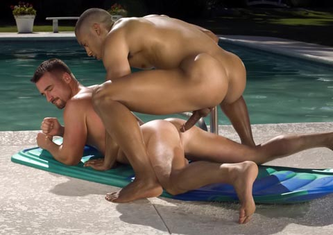 Watch Trunks 5 (Hot House) Gay Porn Tube Videos Gifs And Free XXX HD Sex Movies Photos Online