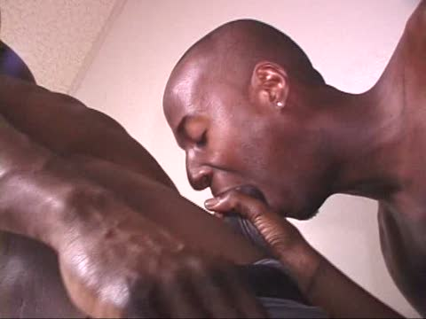 Watch All Over His Face (Adult Entertainment Broadcast Network) Gay Porn Tube Videos Gifs And Free XXX HD Sex Movies Photos Online