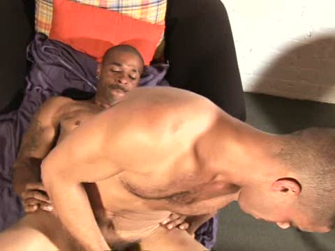 Watch The Opening Of The Big Dick Club (Adult Entertainment Broadcast Network) Gay Porn Tube Videos Gifs And Free XXX HD Sex Movies Photos Online