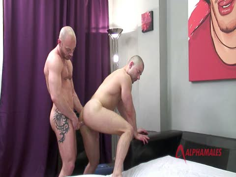 Watch Fixed And Fucked (Adult Entertainment Broadcast Network) Gay Porn Tube Videos Gifs And Free XXX HD Sex Movies Photos Online