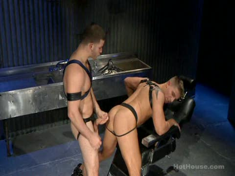 Watch The Sub (Adult Entertainment Broadcast Network) Gay Porn Tube Videos Gifs And Free XXX HD Sex Movies Photos Online