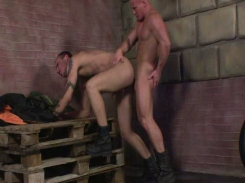 Watch Cum Fucking Skinheads 3 (Adult Entertainment Broadcast Network) Gay Porn Tube Videos Gifs And Free XXX HD Sex Movies Photos Online