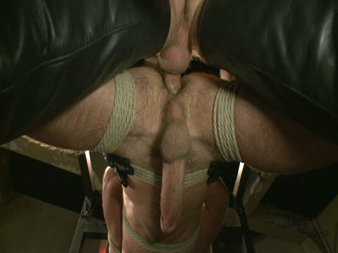Watch Bound Gods: Huge Cock Boy Bound, Beaten And Fucked (Adult Entertainment Broadcast Network) Gay Porn Tube Videos Gifs And Free XXX HD Sex Movies Photos Online