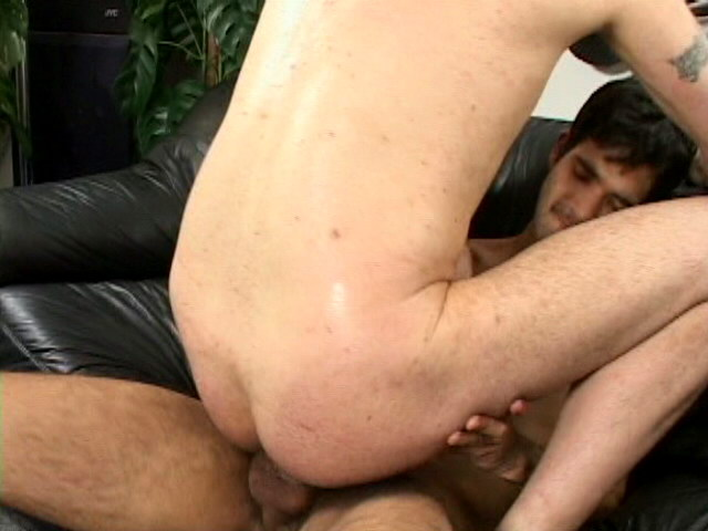 Watch Steeve (Impossible Gay Cocks) Gay Porn Tube Videos Gifs And Free XXX HD Sex Movies Photos Online