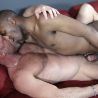 Watch Chad Brock And Curtis Black (Breed Me Raw) Gay Porn Tube Videos Gifs And Free XXX HD Sex Movies Photos Online
