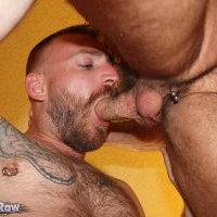 Watch Chad Brock And James Roscoe (Breed Me Raw) Gay Porn Tube Videos Gifs And Free XXX HD Sex Movies Photos Online