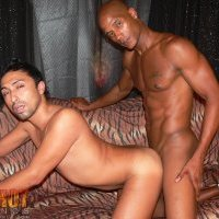 Watch Billy Long And Marco Madness (Red Hot Latinos) Gay Porn Tube Videos Gifs And Free XXX HD Sex Movies Photos Online