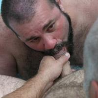 Watch Cajun Bear And Wayne Daniels (Bear Films) Gay Porn Tube Videos Gifs And Free XXX HD Sex Movies Photos Online